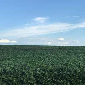 agricultura_conpriste_s1